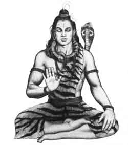 Does Shri Shiva incarnate? And does He actuall